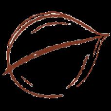 Dulce de Arándanos (Lingote)